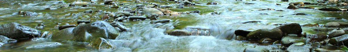 cropped-pa-stream_sm.jpg